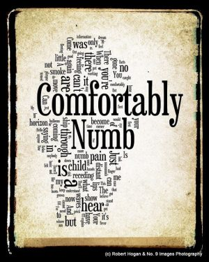 """Le mie """"Comfortably Numb"""""""